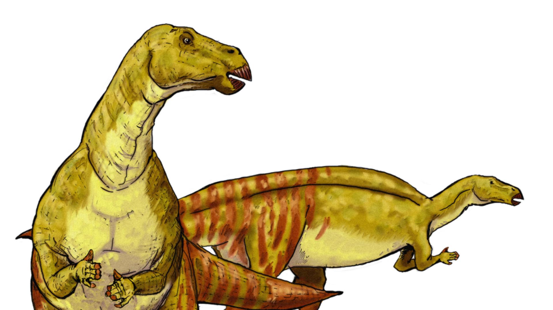 Ship Dinosaurs